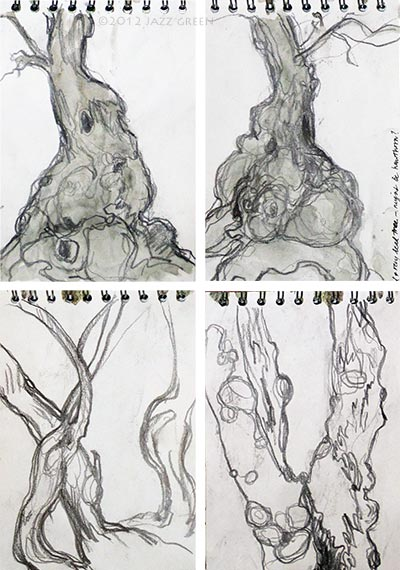 sketchbook drawings of old, gnarled trees, near flatford, dedham vale, constable country