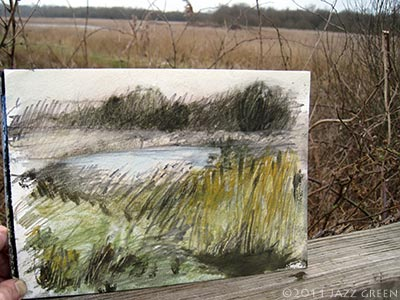 local nature fen - sketch in watercolour, acrylic and pencil