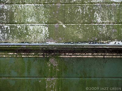 photograph - weathered surface - decay green mould algae
