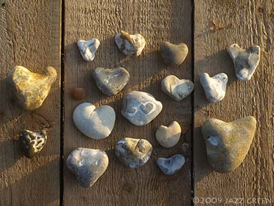 collection of heart shaped pebbles found at the coast