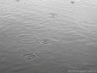 lake water, starting to rain - circle patterns forming on surface