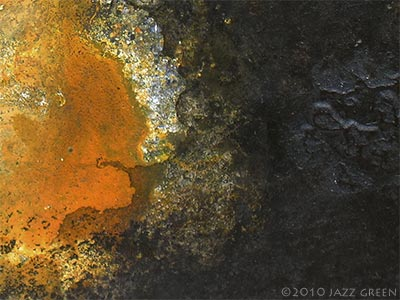 lichenscape - lichen textures - abstract painting - decay elements