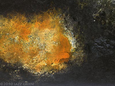 lichenscape by jazz green - surface elements of abstract painting - lichen on walls - material worlds