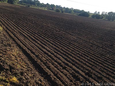ploughed-field-furrows-suffolk-september