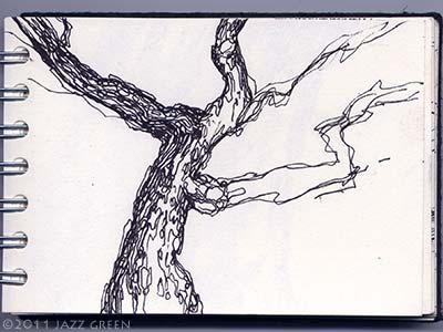 sketchbook drawings - a gnarled old tree