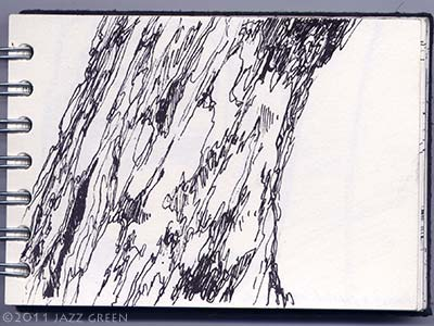 sketchbook drawings - tree bark