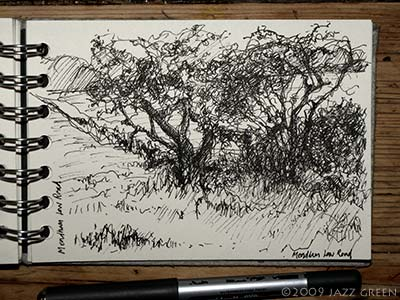 sketchbook drawing - corner of field with trees and ditch