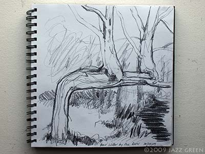 sketchbook - bent willow by riverbank