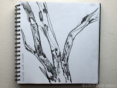sketchbook drawing of tree and moss covered bark