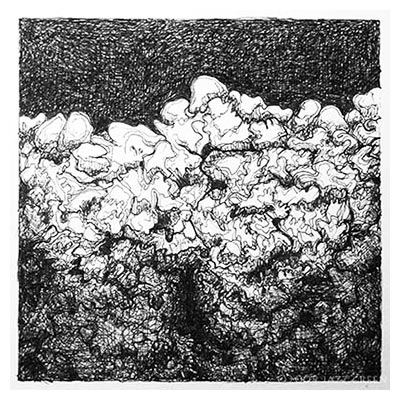 Lichen drawings - pen on paper - by Fine Artist Jazz Green. Works on Paper Gallery.